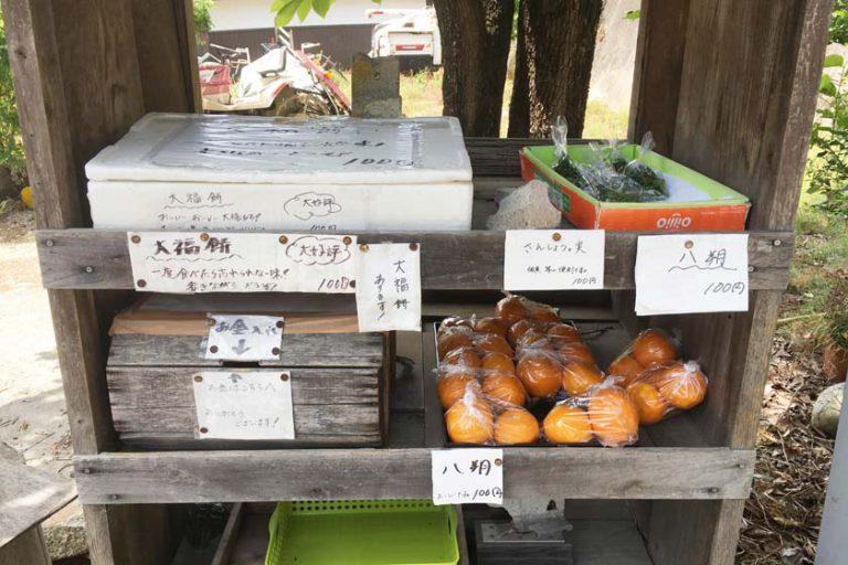 Journey to Nara Part 1: Yamanobe Road, Omiwa Shrine and Mt. Miwa
