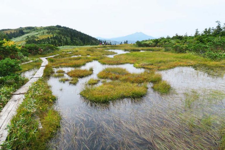 尾瀬の旅 会津駒ヶ岳、尾瀬ヶ原、尾瀬沼、手白沢温泉